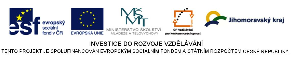 Prevence školní neúspěšnosti na základních školách ve městě Brně